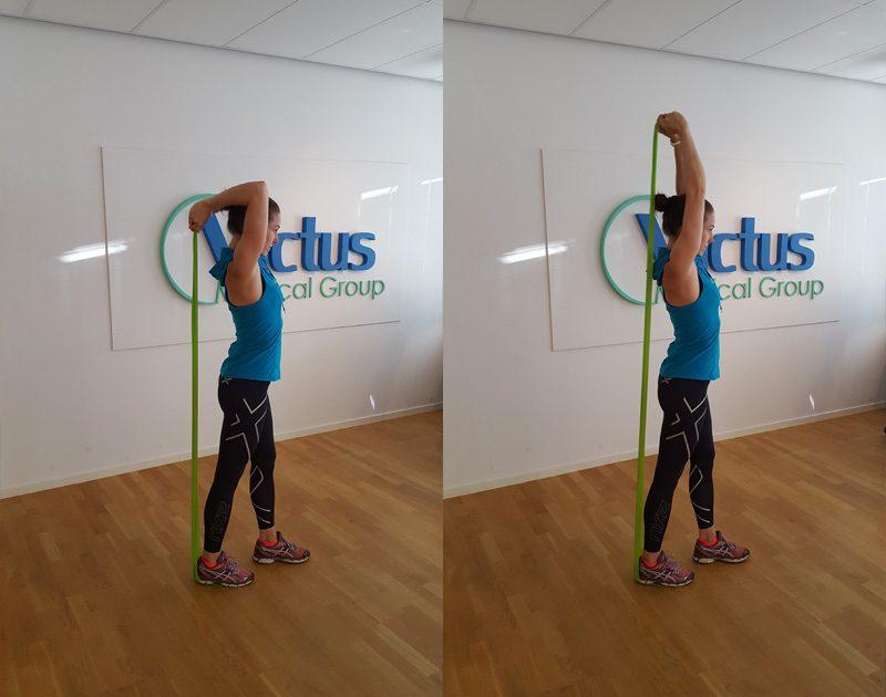 Stående tricepspress (Tränar: Baksida arm)